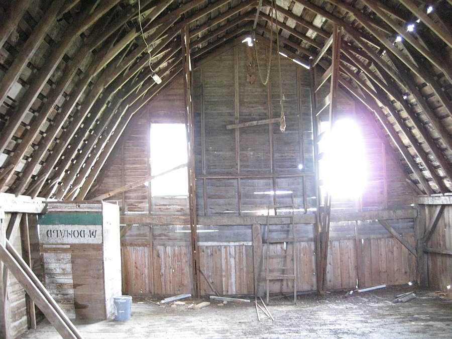 Interior Show Milking Barn Maasdam Barns